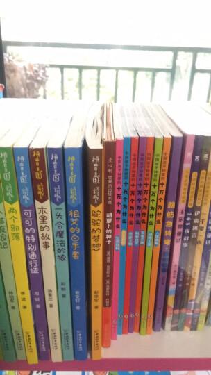 泡泡儿去旅行 幼儿图书 早教书 故事书 儿童书籍 晒单图
