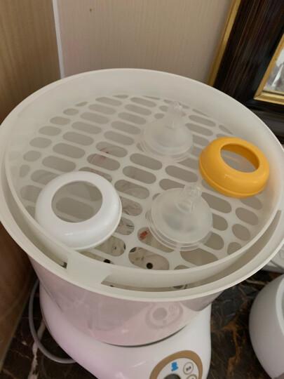 小白熊(Snow Bear)婴儿奶瓶消毒器带烘干 多功能餐具玩具消毒锅HL-0871 晒单图