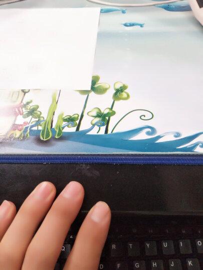 输不起的莎莉 故事书 儿童书籍 晒单图
