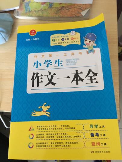 中华上下五千年(全4册)千幅精美图片 历史年代精准 晒单图
