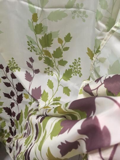晟旎尚品 不锈钢可伸缩加厚浴帘杆 衣柜撑杆 窗帘杆衣柜撑杆 70CM-120CM(2只装) 晒单图