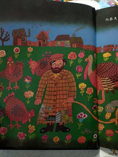凯迪克金奖绘本:约瑟夫有件旧外套(启发童书馆出品) 晒单图