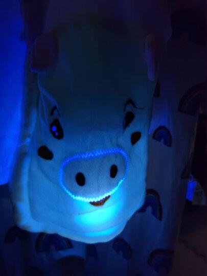 绿之源 mini荧光剂检测笔365nm紫光灯手电筒测试化妆品面膜验钞紫外线灯 晒单图