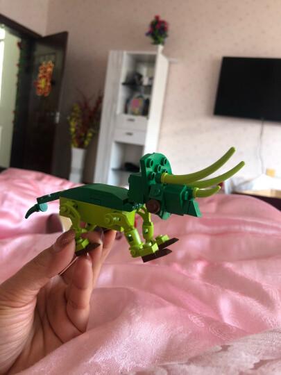 积高(COGO)恐龙积木八合一(3变1共25款造型)儿童玩具拼插模型 拼装恐龙小颗粒 男女孩礼物 471块 13008 晒单图