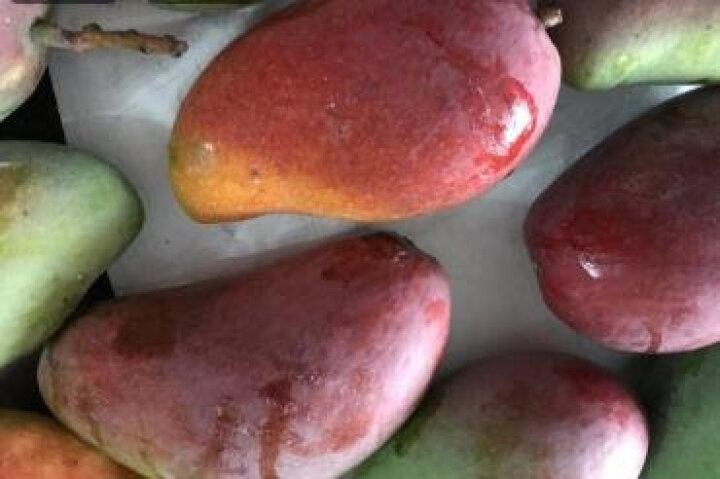 【四川扶贫馆】芒果水果大青芒 带箱5斤 大芒果生鲜现摘水果 晒单图