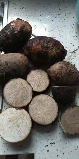 蔬果哆 新鲜蔬菜 广西特产 桂林 荔浦芋头 槟榔芋头 2.5kg (五斤免邮) 大香芋 约3-4个 晒单图
