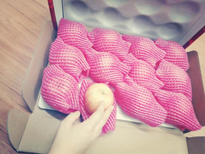 寻真 山东烟台栖霞红富士苹果 礼盒15个装 单果300g以上 礼品 晒单图