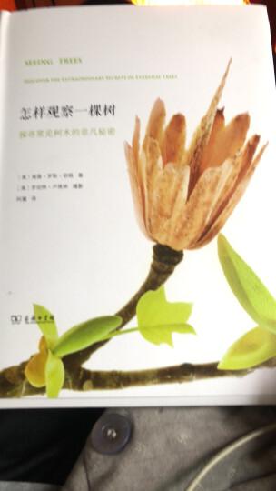 醉酒的植物学家:创造了世界名酒的植物 晒单图
