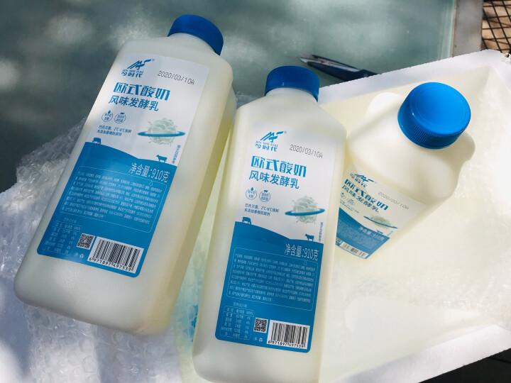 今时代(JIN SHI DAI) 欧式原味儿童早餐酸牛奶老北京低温老酸奶 910g*3 晒单图