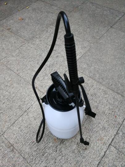 沃施(worth) 气压喷雾器4升型 背负式喷雾壶 家用手动式高压农用农药喷壶浇花洒水壶 园艺工具 晒单图