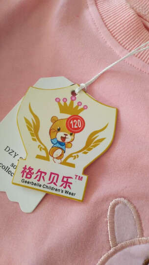 童装女童套装春装儿童套装1-2-3一5岁女宝宝秋冬季两件套小女孩衣服 小猪款粉色 120码建议115-120cm4-5岁宝宝 晒单图