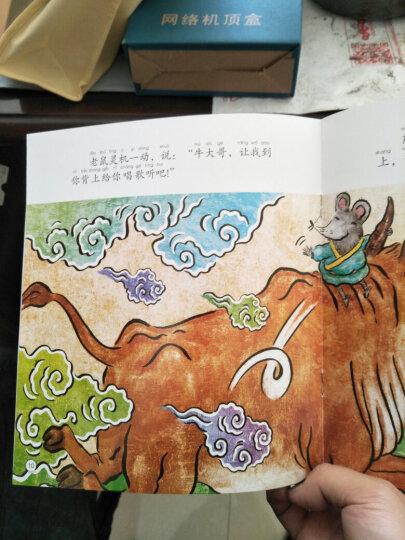 十二生肖的故事+节日传说故事绘本 (全套22册)睡前故事书籍亲子早教书籍中国传统节日绘本 晒单图