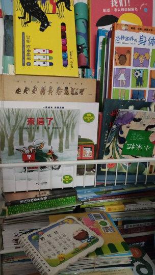 当代外国儿童文学名家克里斯蒂娜·涅斯玲格作品:幽灵婆婆罗莎 晒单图