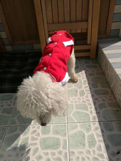 华元hoopet 狗狗衣服泰迪比熊贵宾卫衣棒球服秋冬保暖衣服 红白  L-胸围40-44cm 晒单图