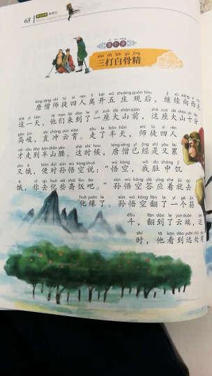 世界儿童文学四大名著(套装共4册) 晒单图