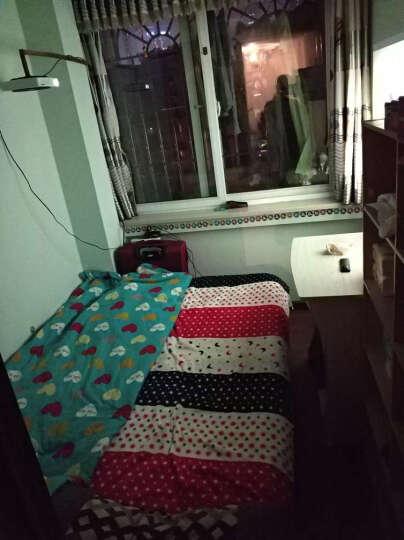 佰安广厦床北欧实木床1.8米双人床1.5米成人床1.2米单人床现代简约松木家具出租房 原木无抽送8厘米3E椰梦维环保硬棕垫含安装 1.5米*1.9米 晒单图