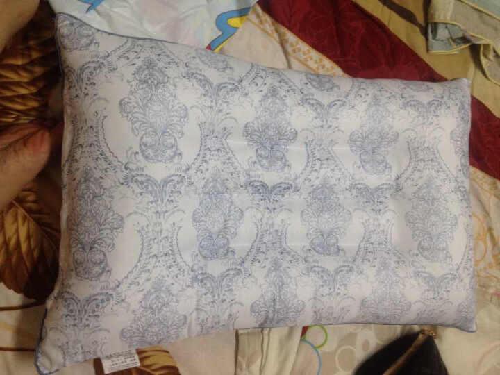 伊人风采家纺 枕芯单人床上用品枕头 紫色 两只装 晒单图