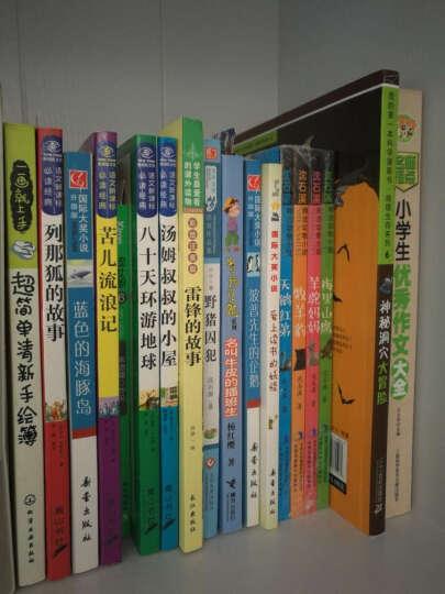 幸运的坏男孩/摆渡船当代世界儿童文学金奖书系 晒单图