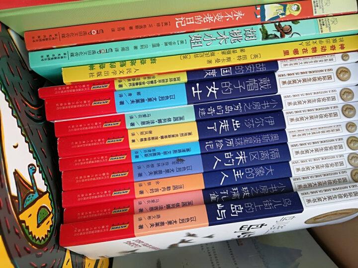 国际安徒生奖大奖书系(文学作品)·冬天之书 晒单图