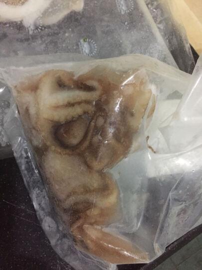 东海渔村  鲜活青岛八带(墨鱼)(小章鱼)(八爪鱼)500克   海鲜水产 晒单图