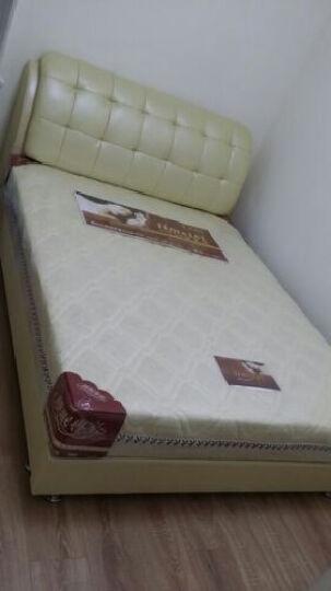 丽美诗 席梦思床垫 棕垫 弹簧床垫 可以全拆洗床垫 828 织锦面料+环保椰梦维+精钢弹簧 1.5*1.9 晒单图