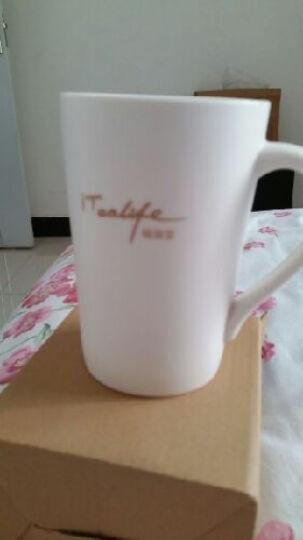 聚芳永泡茶玻璃杯茶杯  赠品勿拍 晒单图