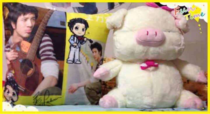 韩国OZLAND金三顺三顺猪 猪猪玩具 麦兜猪 毛绒玩具公仔 45cm 晒单图