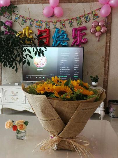 向日葵鲜花速递送老师爸爸男友生日礼物送朋友领导花束 M款 11朵向日葵 晒单图