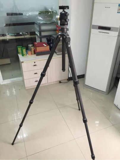 FLM 孚勒姆 CB43FT-AII 单反相机三脚架中型球形全景云台 承重:30kg 晒单图