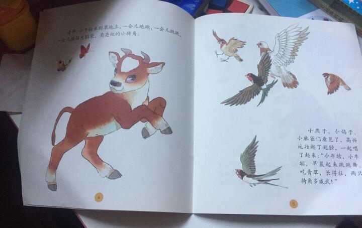 中国名家经典原创图画书乐读本:小牛牯 晒单图