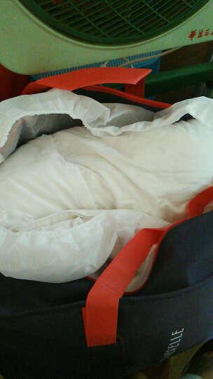 安睡宝被子被芯 分区恒温防螨90%鹅绒被 加厚保暖冬被芯羽 图片色 200*230cm 晒单图