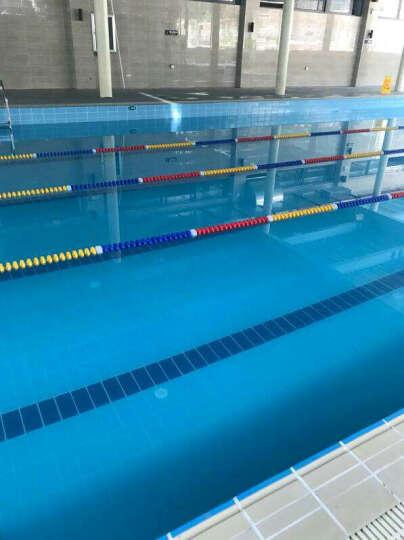 POOLMATE游泳池自动吸污机水下吸尘器水龟可爬墙水池底清洁机器人设备过滤吸污机 ICH-120 晒单图