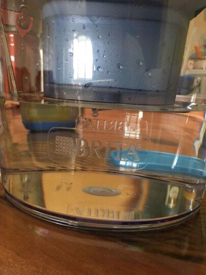 【欧洲原装】碧然德(BRITA)滤水壶Marella金典系列3.5L套装蓝色 家用净水器过滤器办公室净水壶1壶1芯 晒单图