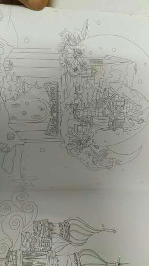 梦幻之旅 晒单图