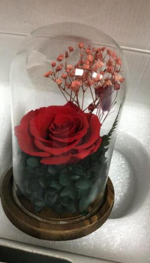 DILOVE蒂爱  进口永生花礼盒玻璃罩玫瑰花鲜花速递送女朋友老婆情人节礼物 时光依旧,我们不老 晒单图