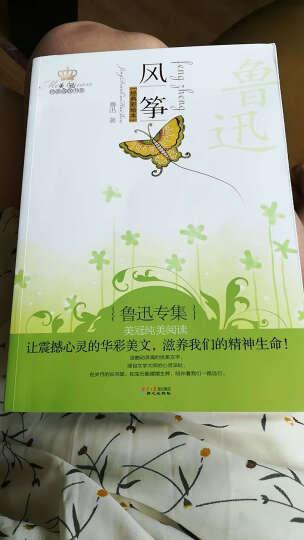 鲁迅专集:风筝(经典彩绘本) 晒单图