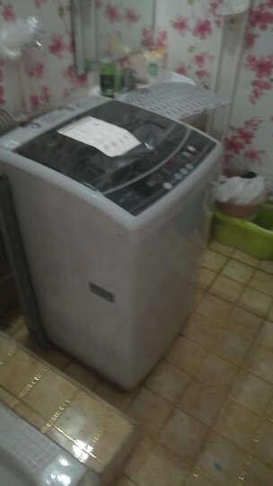 美的(Midea)洗衣机8公斤全自动波轮洗衣机 家用宿舍用甩干8kg 晒单图
