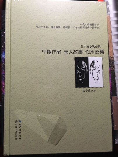早期作品:唐人故事 似水柔情(王小波小说全集) 晒单图