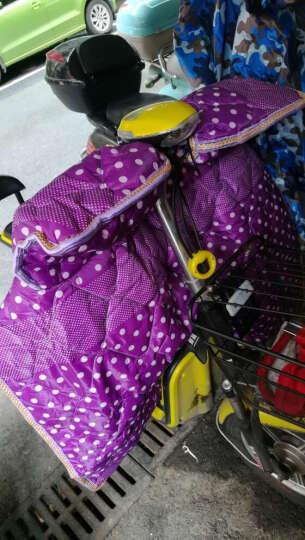 恺亨(KHENG)1406-2自行车电动车冬季电摩踏板车挡风被 紫色 晒单图