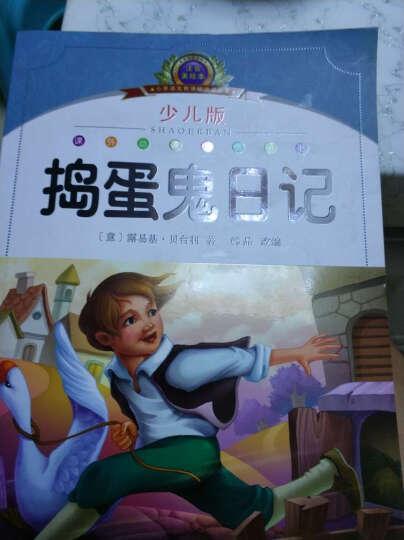 小学语文新课标阅读必备:捣蛋鬼日记(少儿版)(注音美绘本) 晒单图