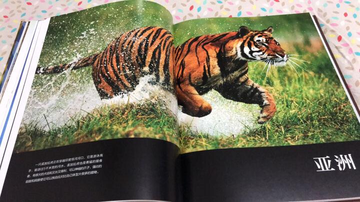 中国国家地理少儿百科 野生动物 晒单图