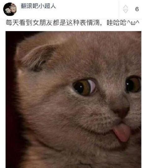 中国思想史资料丛刊:南华雪心编(套装上下册) 晒单图