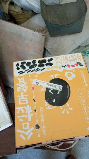 马来西亚进口 马卡兰(MAKANAN)牛奶巧克力味迷你夹心卷 95g*1盒 晒单图
