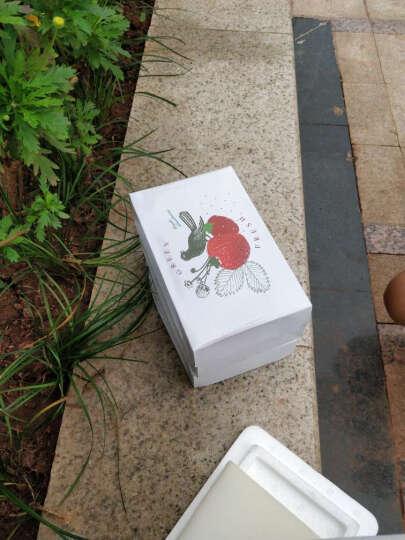 香宜惠(XIANGYIHUI) 空运 香宜惠 直销新鲜奶油草莓 3盒约1200g 晒单图