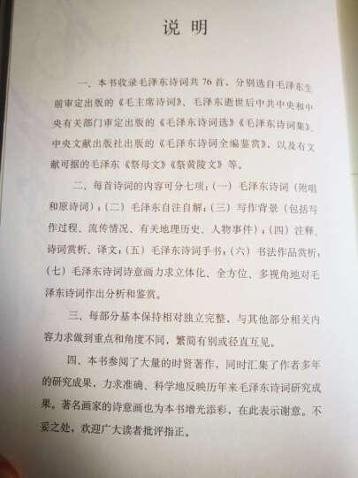 毛泽东诗词书法诗意画鉴赏 晒单图