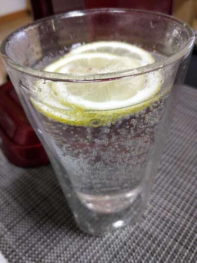 乐创(lecon) 苏打水机家用商用气泡水机汽水机 白色升级版+2支气压瓶+2个水瓶 晒单图