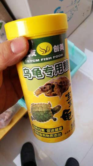 三友创美 乌龟粮 巴西龟饲料 猪鼻龟食 小乌龟饲料 220g/罐 晒单图