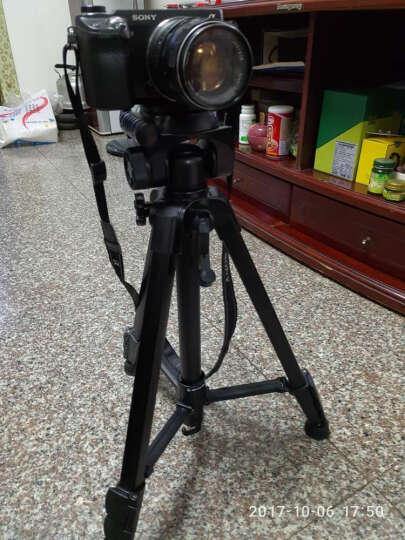 云腾(YUNTENG)自拍杆 258便携迷你三脚架 手机自拍支架 视频会议桌面 单反微单卡片相机摄像机微距三角架 晒单图