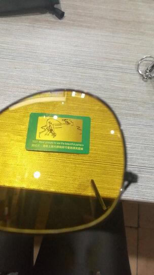 艾塔雷朋太阳镜男弹簧腿墨镜男女偏光镜潮人驾驶蛤蟆镜开车司机墨镜男 金框茶片 高清偏光 金框 晒单图