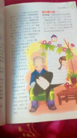 别怕作文:张老师讲作文·小学生考场作文高分技巧(3-6年级)(彩图版) 晒单图